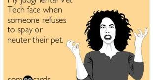 Vet Tech Memes - my judgmental vet tech face when someone refuses to spay or