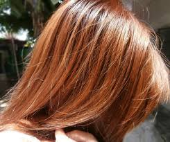 best hair color for hispanic women 42 best hair color images on pinterest asian hairstyles hair and