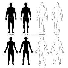 fashion man u0027s figure stock vector image 77983590