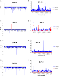 the evolution of vp1 gene in enterovirus c species sub group that