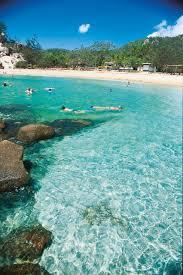 snorkelling at alma bay magnetic island queensland australia