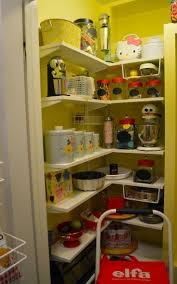 Organizing Kitchen Pantry Ideas by 69 Best Elfa Shelving Kitchen Images On Pinterest Elfa