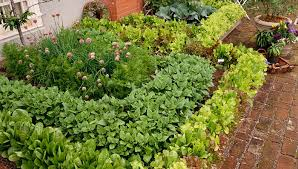 vegetable garden planner free tips vegetable garden planner free