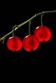 36 best color red images on pinterest red colour red and color red
