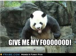 Funny Panda Memes - 20 incredibly cute and funny panda memes sayingimages com