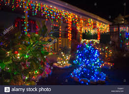 abstract christmas background lights on trees and plants puerto