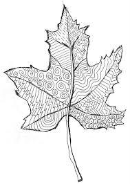 coloring page autumn dead leaf 11