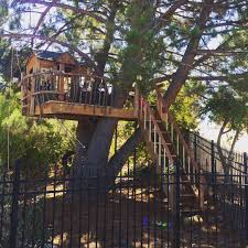 Backyard Play Structure by Treehouse Tree House Playhouse Wood Tree Branch Hand Rail