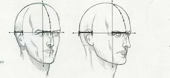 drawing the human head drawing the human head joshua nava arts