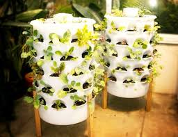 easy to create vertical garden ideas for your home hometone