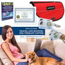 Comfort Dogs Certification A Guide To Therapy Animals Dogs Cats U0026 More Esara