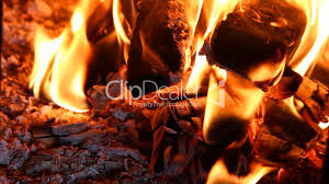 beautiful fire in the fireplace vídeos de archivo y clips libres