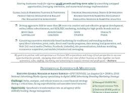 cfo resume samples pdf sample cfo resume cfo resume samples cfo resume sample cover