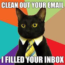 Clean Cat Memes - clean out your email cat meme cat planet cat planet