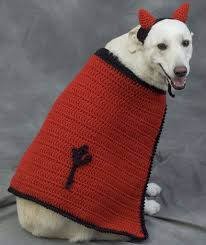 101 best free crochet dog sweater patterns images on pinterest