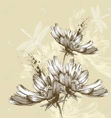 abstract blooming flowers flying dragonflies hand drawing vector