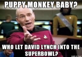 Baby Monkey Meme - puppy monkey baby meme on imgur