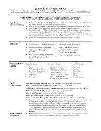 Resume Application Form Sample by Mcdonalds Resume Funny Contegri Com