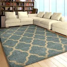 Home Goods Area Rugs Homegoods Rugs Gallery Of Stunning Rugs Homegoods Rugs
