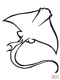manta ray coloring pages printable images kids aim