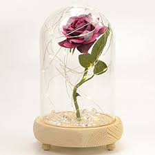rose in glass magical pink handmade enchanted rose in glass dome bell jar with led