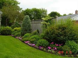 Bushes For Landscaping Backyard Privacy Bushes Wonderer Me