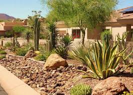 Garden Decorating Ideas Pinterest Image Result For Mojave Desert Home Landscaping Desert Garden