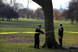 Hanging Pictures by Person Found Dead Hanging From Tree Off Lake Shore Drive