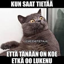 Suomi Memes - meemitietäjä meemitietaja instagram photos and videos