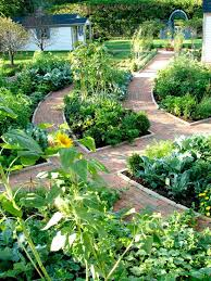 Best  Vegetable Garden Design Ideas On Pinterest Vege Garden - Backyard vegetable garden designs