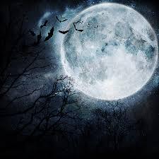halloween sky background bigstock halloween background bats fly 29609033 jpg