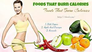13 foods that burn calories to lose weight fast