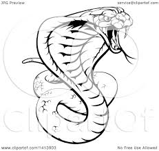 clipart of a black and white lineart angry king cobra snake ready