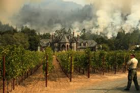 California Wildfire Cat california fires sonoma evacuees restless to return home time com