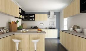 Kitchen Design India Small U Shaped Kitchen Designs With Island Layout Plan Cabinet