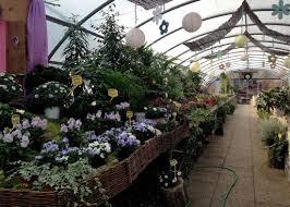 flower shops florists flower shops og venice italy travel guide