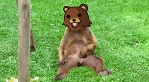 Running Bear Meme - best running kid meme pedo bear s find share on giphy kayak