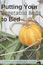 best 25 vegetable bed ideas on pinterest