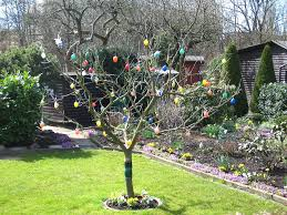 german easter egg tree german easter traditions german school