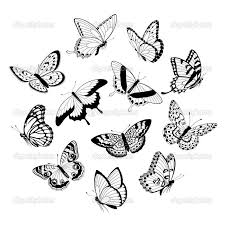 butterflies black and white outline collection 72