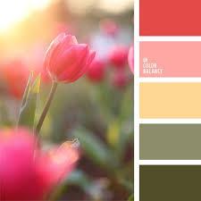 best 25 coral color ideas on pinterest coral color schemes