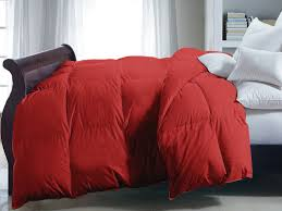 100 home design down alternative comforter interesting