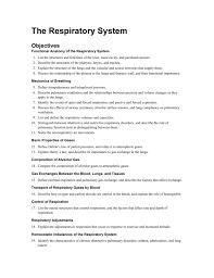 the respiratory system sinoe medical association