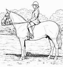 coloriage a imprimer cheval