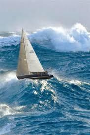 image result for sailboat america u0027s cup boat pinterest boating