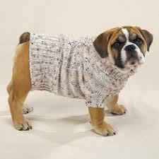 pet sweaters top 5 free sweater knitting patterns sweater knitting