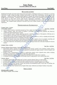 Insurance Sample Resume by Sample Insurance Underwriter Resume Warehouse Manager Sample
