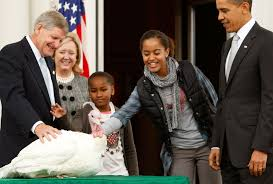 president obama pardons thanksgiving turkey cbs dc