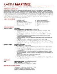 Example Of Resume Summary by Resume Synopsis Examples Resume Cv Cover Letter Summary For
