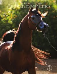 arabian horse times vol46 no12 issue 5 by arabian horse times